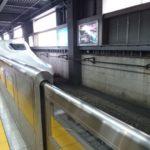 飼い主、京都へ with P!衝撃の伏見稲荷