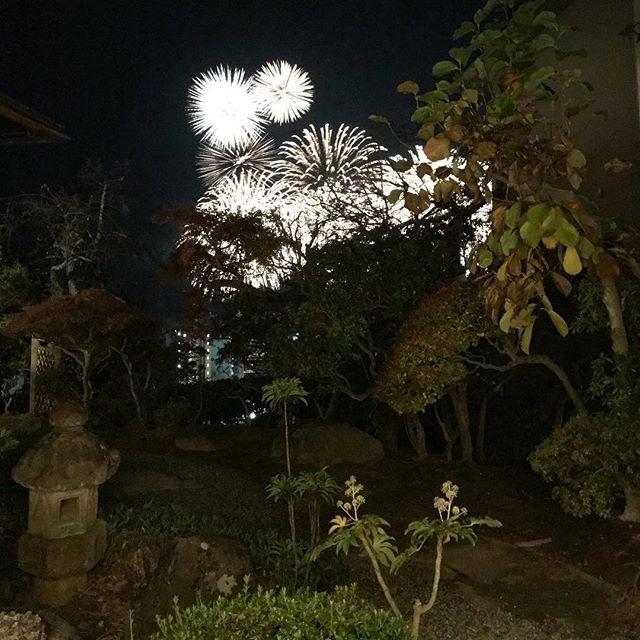 Fuochi d'artificio invernale花火ビュー️#温泉 #japan #ilovejapan #atami #onsen #terme #日本 #冬の花火 #素敵