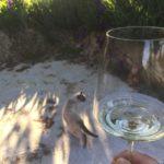 イタリアの美しい田舎でリラックス♪</br>ホームステイ気分で料理&ワイン