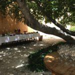 真夏の太陽きらめく…美しいプラネータのワイナリーへ!